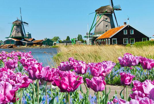 Schonste Orte In Holland Am Meer Tui Villas Reisetipps